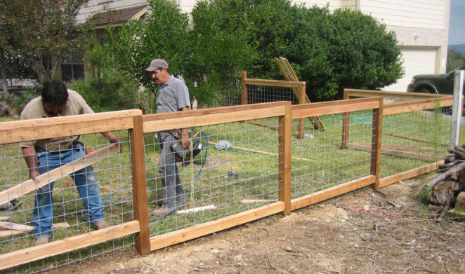 4 ft cattle panel fencing